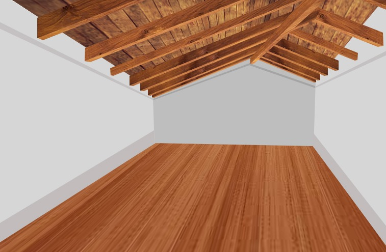 Shed Ceiling