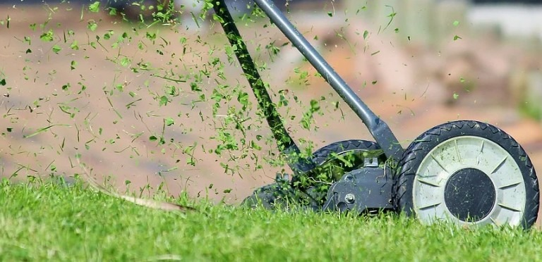 Photo of 7 Things you should not do to your Lawn