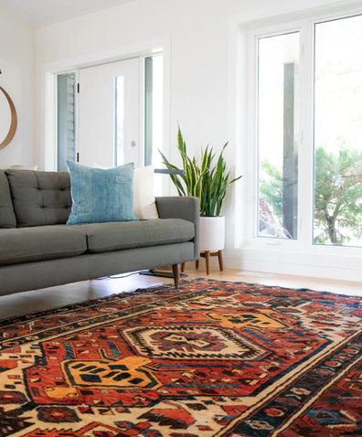 beautiful carpet in the living room